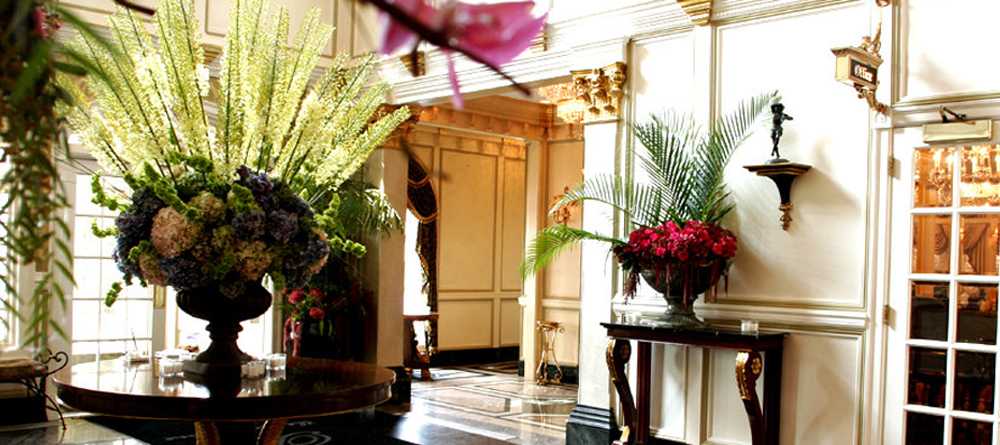 The Brownstone, Elegant Lobby