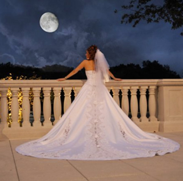 The Palace at Somerset Park, Bridal Dreams
