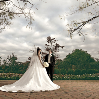 Search for New Jersey Weddings
