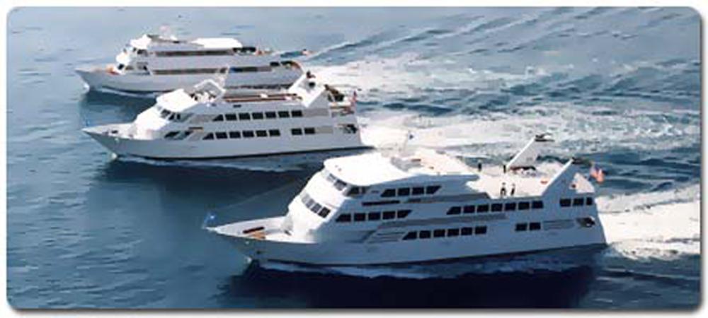 Smooth Sailing Celebrations, Three Windridge Yachts