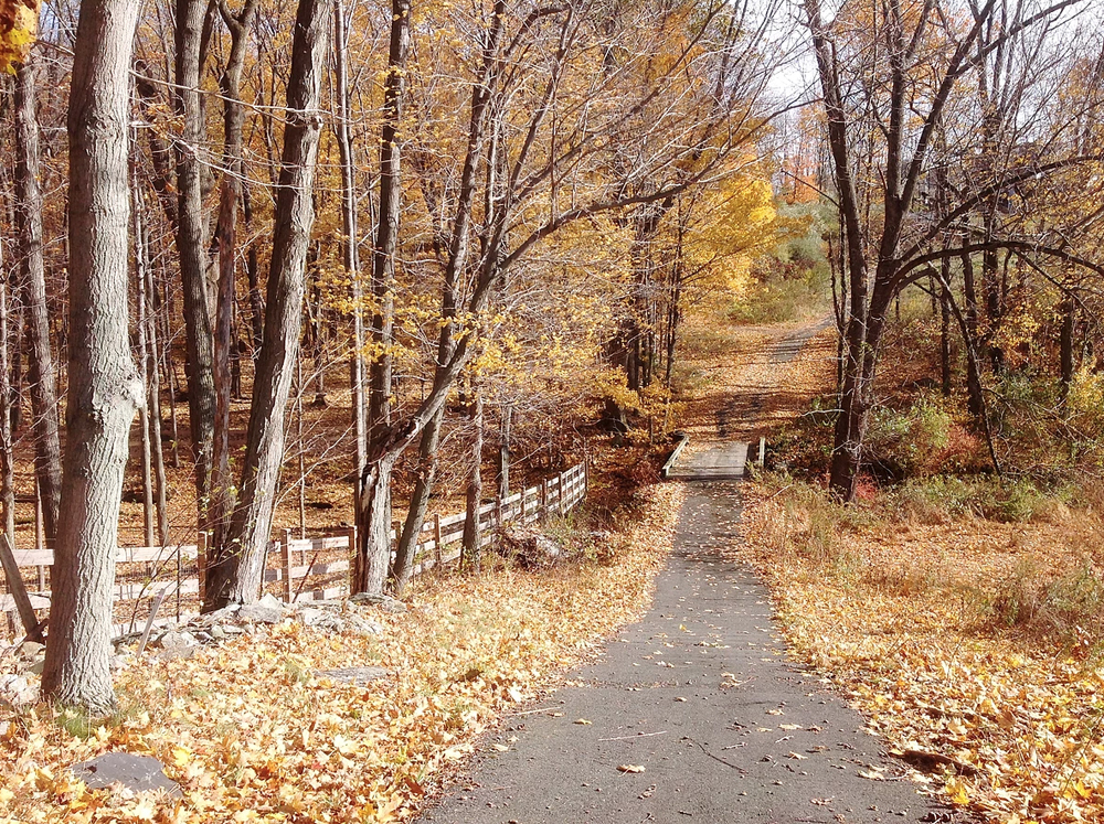 Bear Brook Valley (Photo: Perry Bonadis)
