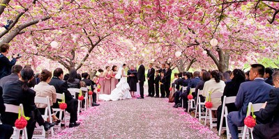 Brooklyn botanic garden new york weddings - Restaurants near brooklyn botanical garden ...