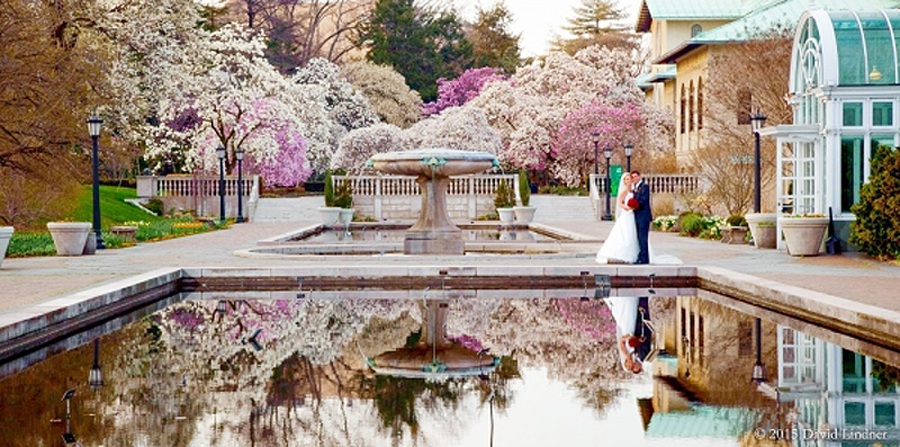 Brooklyn botanic garden new york weddings brooklyn botanic garden lily pool photo david lindner junglespirit Gallery