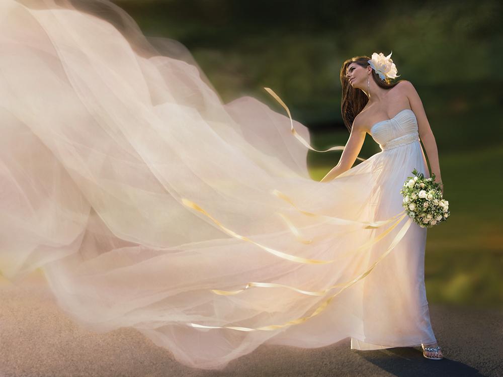 Oleg Cassini, The Wedding Dress; Lee Nestor